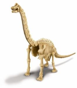 DT - Dinosaurio