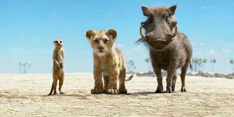 ERL - Timón y Pumba